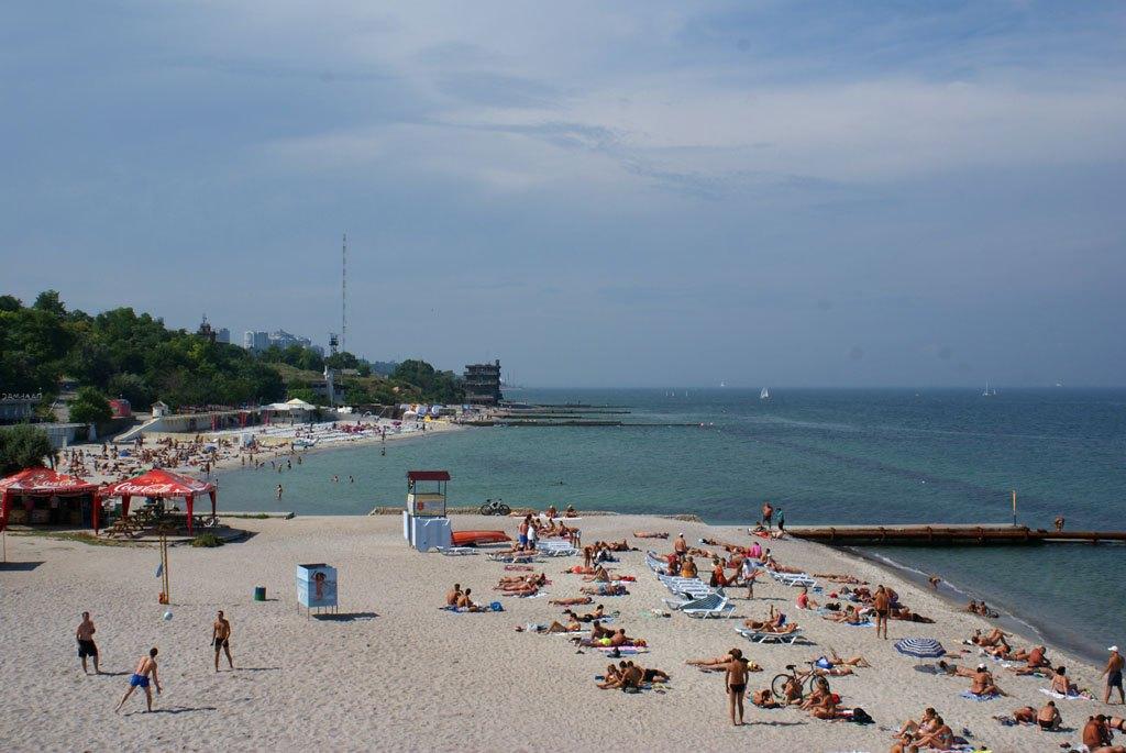 Odessa Dolphin Beach